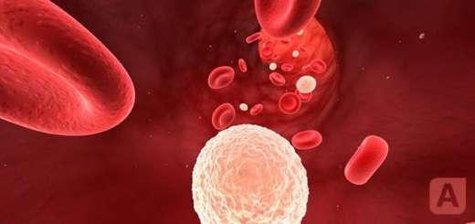 лейкоцитоз при диагнозе аппендицит